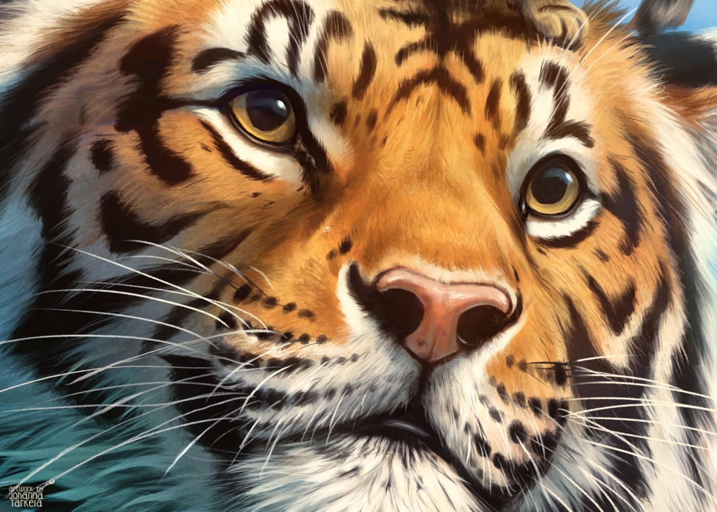 Tigercat_detail2